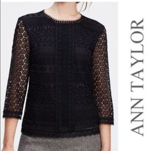 ann taylor navy lace eyelet top